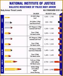 Ballistics Table Bullet Ballistics Chart