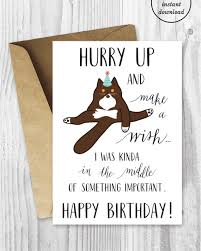 funny birthday printable cards funny british shorthair cat