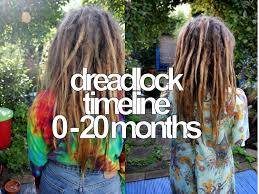 stages of dreadlocks pictures color gurl
