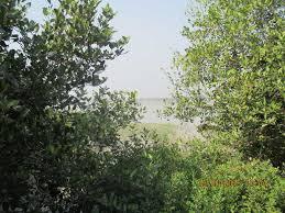 golpatar jungle outing kolkata places visit