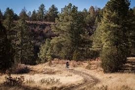 New Mexico forest images Billy the kid and the lincoln national forest nm while out riding jpg