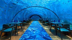 5 8 undersea restaurant u2013 maldives underwater restaurant