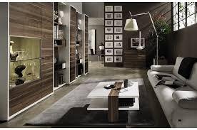 livingroom modern contemporary living room pictures home design ideas fxmoz