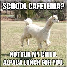 School Lunch Meme - school cafeteria not for my child alpaca lunch for you alpaca