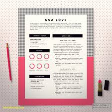 eye catching resume templates best of resume template best templates