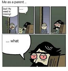 Dad Comic Meme - me as a parent dad my weed is missing what dad meme on me me