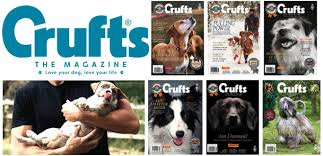 crufts australian shepherd 2014 the crufts magazine features wildwash founders wild wash blog