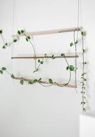 diy an indoor trellis for climbing vines gardenista sourcebook