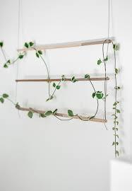 Plant Trellis Diy An Indoor Trellis For Climbing Vines Gardenista