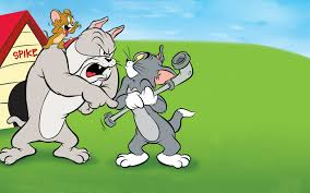tom jerry dog house wallpapers13