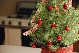 Red And Brown Christmas Tree Decorations by Christmas Decorating Ideas 3 Ways To Decorate Mini Trees