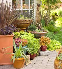 How To Plant A Garden In Your Backyard Gardening