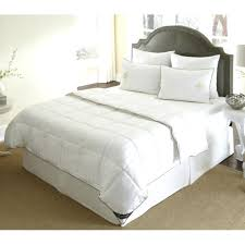 Down Alternative Comforter Twin Xl Alternatives To Bed Frame U2013 Bare Look