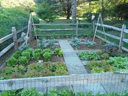 garden walkway ideas garden walkways by vegetable gardens 4 u garden layout design