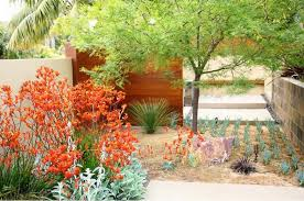 Mediterranean Backyard Landscaping Ideas A Fabulous Yard Debora Carl Landscape Design