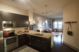 Home Design Denver by Apartment 2 Bedroom Apartments Denver Home Design Very Nice Cool