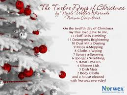 21 best norwex 12 days of christmas 2014 images on pinterest 12