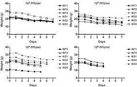 the p53 target gene puma drives neutrophil mediated protection