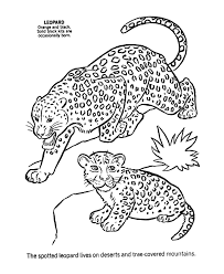 animal coloring pages for children cute baby animal coloring pages wild animal coloring pages