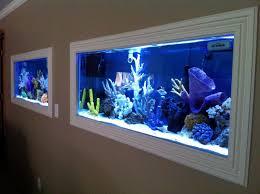 Wall Aquarium by Wall Aquarium Decoration Idea Luxury Best With Wall Aquarium