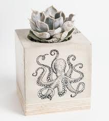 octopus concrete planter home decor u0026 lighting mdc scoutmob