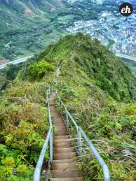 Hawaii Haiku Stairs by Should The City And County Of Honolulu Reopen Haiku Stairs