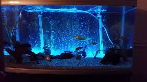 color changing led fish tank lights led fish tank lights changing colour youtube
