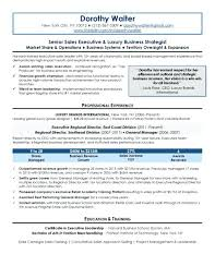 Senior Management Resume Templates Business Executive Resume Sample U2013 Topshoppingnetwork Com