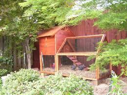 Chickens Backyard Japanese Chicken Coop 4 Vfem Chickens Go Green Chicken Coop