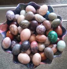 ornamental egg collection alberton gumtree classifieds south