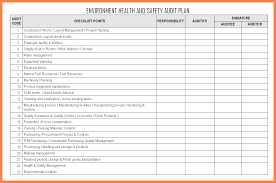 audit format project executive summary template