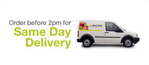 same day flowers flower delivery in all melbourne vic australia
