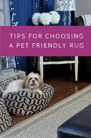 design dilemma choosing a pet friendly rug loveland lodge tips for choosing a pet friendly rug