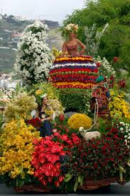 Madeira Flowers - 138 best portugal madeira island images on pinterest landscapes