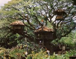 swiss family robinson treehouse movie set swiss family robinson