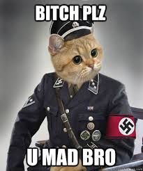 Bitch Plz Meme - bitch plz u mad bro hitler kitty quickmeme
