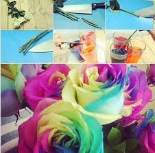 tie dye roses musely