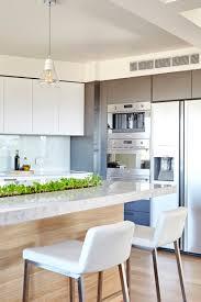 minimalist white modern kitchen with a garden strip in the counter