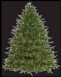 Ez Artificial Christmas Tree Stand Barcana Foot Noble Fir Ready Trim Christmas Tree