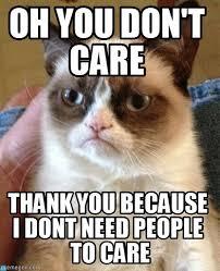 oh you don t care grumpy cat meme on memegen
