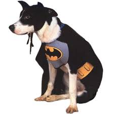 Halloween Batman Costumes Batman Dog Costume Batman Dog Costume Bat Dog Dog