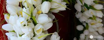 Tulip Wreath Make A Tulip Wreath Spring Floral Ideas Michaelsmakers