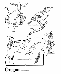 Oregon State outline Coloring Page