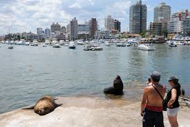 Sun Tan City Green Hills Uruguay 10 Reasons To Visit A South American Treasure Cnn Travel