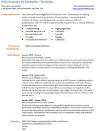 nvq assessor cv example lettercv com