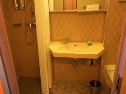 Elation Bathroom Furniture Oceanview Cabin R170 On Carnival Elation Category 6b