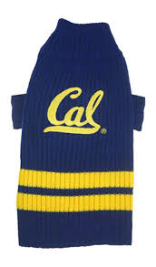 berkeley sweater amazon com pets collegiate california golden bears