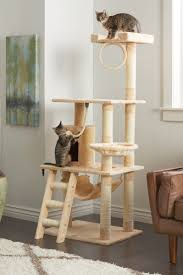 how to choose a scratching post for your cat overstock com