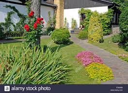 front garden of a country house different ornamental woods