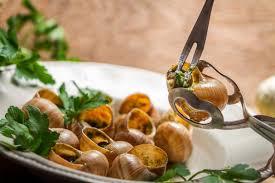 comment cuisiner des escargots réussir la cuisson de vos escargots nos astuces
